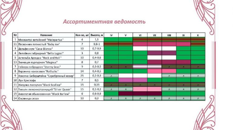 Проект благоустройства прогулочной зоны в Центре Женского Здоровья